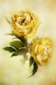 yellow peonies digital painting of beautiful yellow peonies stock photo picture