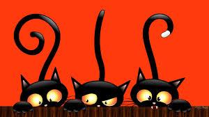desktop backgrounds with halloween cats u2013 halloween wizard