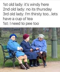 Old Lady Wat Meme - old people are funny lol pinterest people humor and stuffing