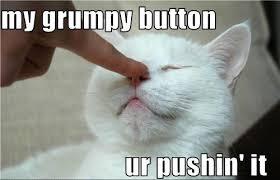 Button Meme - grumpy button meme slapcaption com on we heart it