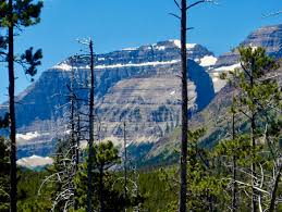 exploring our own backyard the national parks of montana and