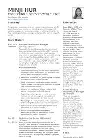 Sle Resume Business Development Director business development manager resume printable planner template