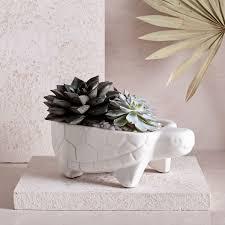 west elm wall decor ceramic turtle planter west elm uk