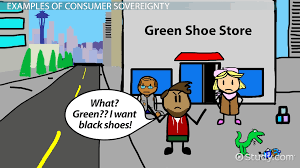 consumer sovereignty definition u0026 limitations video u0026 lesson