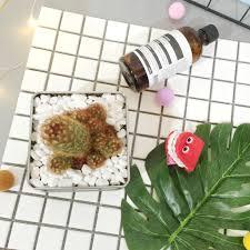 cuisiner les c鑵es cuisiner les c鑵es 100 images 法國la mere poulard曲奇首度抵港