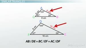 similar polygons definition and examples video u0026 lesson