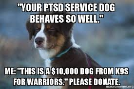Ptsd Meme - your ptsd service dog behaves so well me this is a 10 000 dog