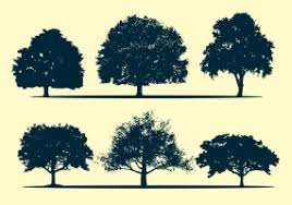 oak tree silhouette free vector graphic free found