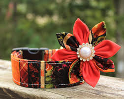 fall collars etsy