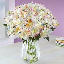 flower deals flowers deals the best online deals sales on flowers