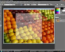 corel paint shop pro photo x2 review digitalcamerareview