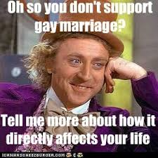 Gay Marriage Meme - 96 best support gay marriage images on pinterest equality social
