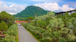 Botanical Garden Station by Nong Nooch Tropical Botanical Garden Pictures View Photos