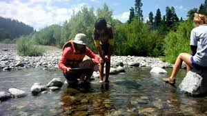 gold prospecting archives a kids day