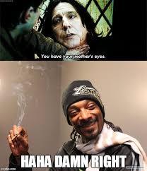 Severus Snape Memes - image tagged in severus snape snoop dogg memes funny memes imgflip