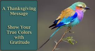 a thanksgiving message show your true colors with gratitude