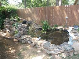 pond ideas and examples by everything fishy