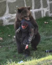 survived grizzly bear attack long live