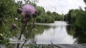 ekopark čierna voda youtube