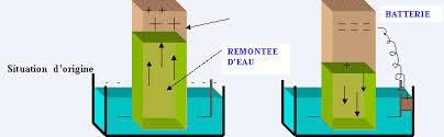 lutter contre l humidité dans une chambre lutter contre l humidité de votre maison maisons humides causes et