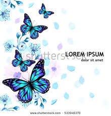 butterfly flowers butterfly flower stock images royalty free images vectors