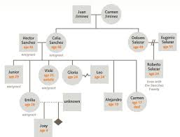 graphics for genogram graphics www graphicsbuzz com