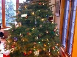christmas tree sale george c marshall boosters christmas tree sale starts nov 30
