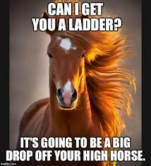 High Horse Meme - horse imgflip