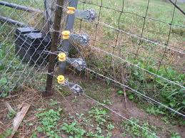 high tensile electric fence backyard chickens