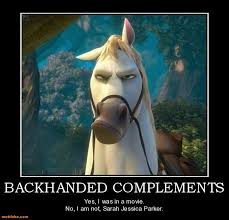 Horse Birthday Meme - parker demotivational poster page