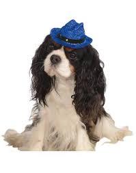 hanukkah hat menorah pet hanukkah hat costume zoo