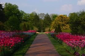 longwood gardens u2014 visit philadelphia u2014 visitphilly com