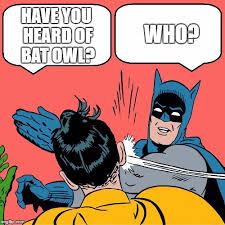 Bright Slap Meme - bat owl imgflip
