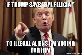Bye Felicia Meme - if trump says bye felicia to illegal aliens i m voting for him