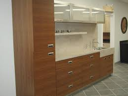Horizontal Kitchen Cabinets Horizontal Design Kitchen New Haven Ct U2014 Camio Custom Cabinetry