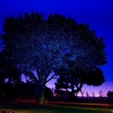 laser lights illuminator sparkle magic blue