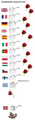 Different Languages Meme - differenze linguitiche rose rose memes and humor