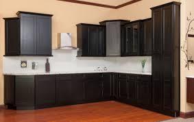 shaker door style kitchen cabinets kitchen cabinet door styles shaker gallery doors design ideas