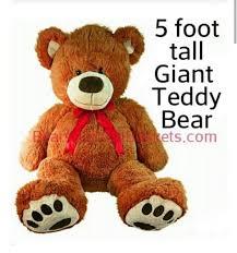 bears delivery teddy bears local delivery orlando fl winter park fl teddy