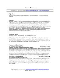 Professional And Technical Skills For Resume Resume Example Summary Professional Summary Resume Examples