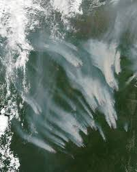 Wildfire Bc Map Interactive by Wildfires In Siberia Image Of The Day