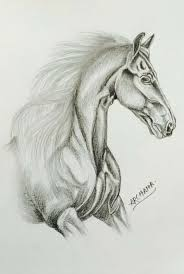 45 best my pencil sketches images on pinterest pencil sketching