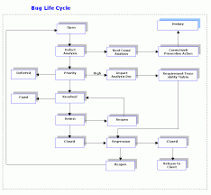 bug cycle sureshdevang