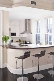 condominium kitchen design full size of kitchen fresh condo cabinets popular home design