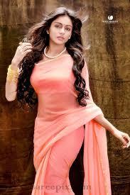 vithika sheru in transparent saree