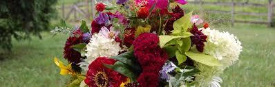 Fall Flowers For Wedding Little Big Farm Blairstown Nj U2013 Organic Cut Flowers For Weddings