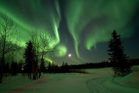 Yukon Lights Festival Claus Vogel Photography Yukon Lights At Night