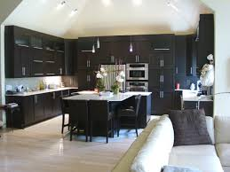 home decor kitchens with black cabinets andes kitchen photos