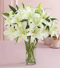 lilies flowers gorgeous bouquets and arrangements from flowers of kansas city