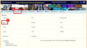 income tax forms malaysia 2016 how to step by step income tax e filing guide imoney